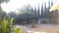 Cal State Fullerton 中秋福音